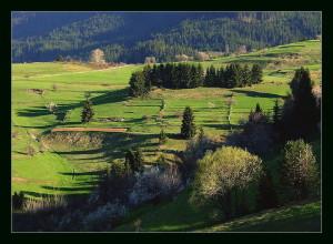 Родопите - село Гела