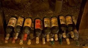400 вина се състезаваха в Третия Балкански винен конкурс