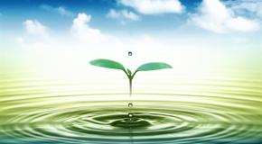 """""""Утоли жаждата"""" и колко е важно да пием вода!"""