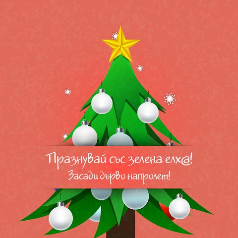 Зелена Коледа за подобряване на градската микросреда и за повече уют в офиса (видео)