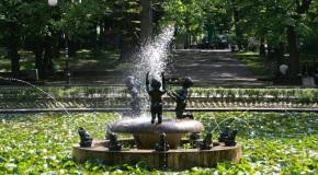 Свободен пазар в Борисовата градина