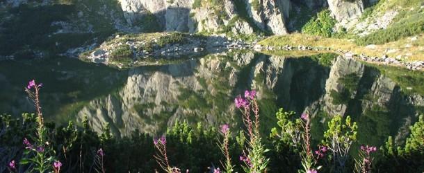 8 тона отпадъци бяха събрани от Рила планина