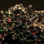 Провеждане на Българската Коледа