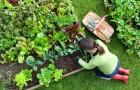 В Смолян ученици се грижат за градините на самотни възрастни хора