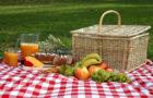 """Фондация """"МС-Мога Сам"""" ще отбележи световния ден на множествената склероза с Много Специален Пикник"""