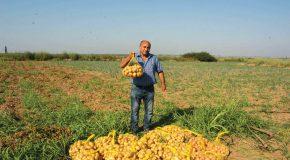 Безработни от монтанско се изхранват от земеделие и даряват на други нуждаещи се