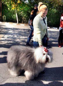 Велислава с кучето си Мон